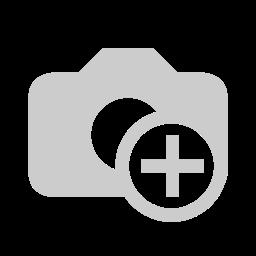 6500 Koleksi Gambar Hewan Melata Terbaru